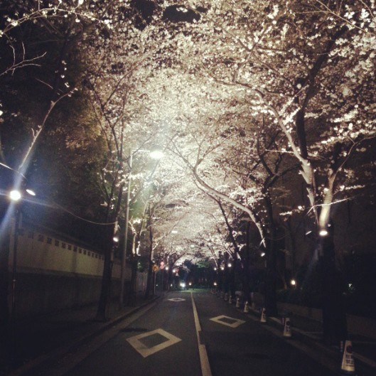 snsd taeyeon instagram (2)